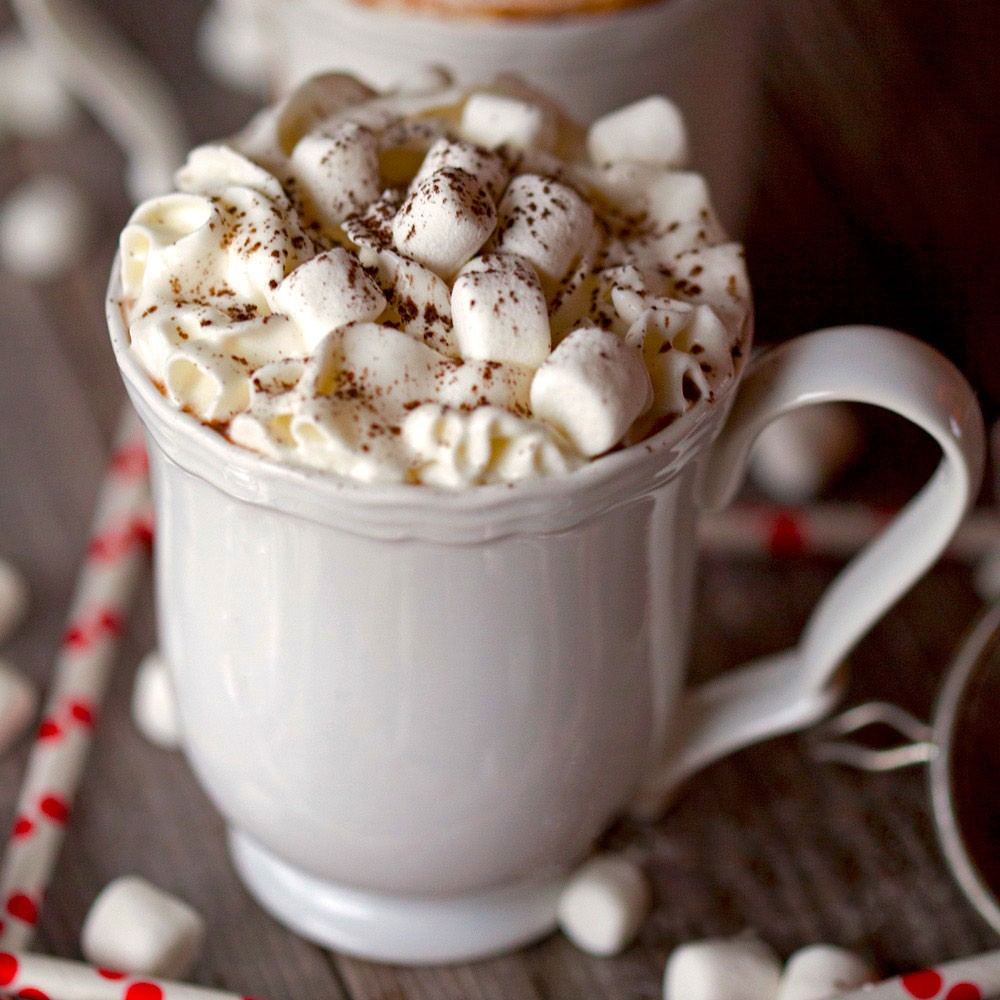Perfect Homemade Hot Chocolate Recipe | Dexam