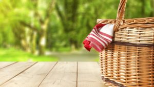 How You Can Have A Delicious Picnic This Summer With These Top Ten Picnic Must-Haves